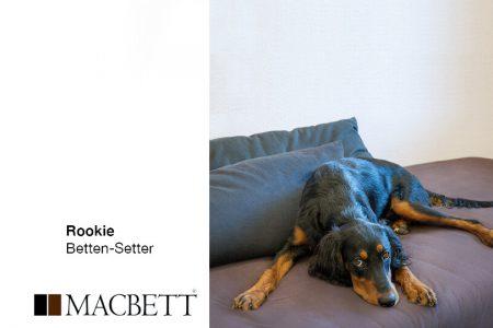 Rookie Hund